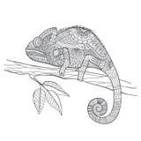 Ящерица хамелеона Zentangle стилизованная Нарисованное рукой illustrat вектора Стоковое Изображение RF