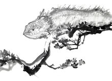 ящерица чернил чертежа щетки китайская Стоковые Изображения RF