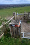 Ящик хлама сельской местности. Стоковые Изображения