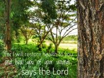 Я восстановлю вас к здоровью и излечу ваши раны с предпосылкой и дизайном природы для христианства стоковое изображение rf