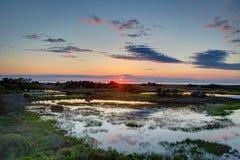 Ядровый заход солнца - зеленый цвет Стоковые Изображения