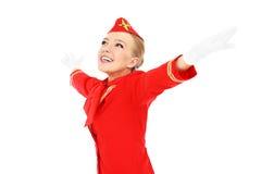 Я люблю лететь! стоковые изображения rf