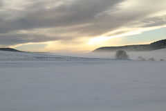 я landscape зима Стоковое Фото