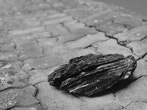 '单独,而是不偏僻的'岩石没有说 免版税库存照片