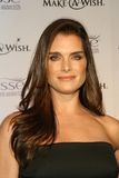 Brooke Shields 库存照片