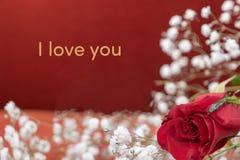 'Eu te amo 'para o dia de Valentim foto de stock