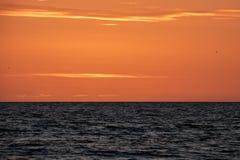 'Flash verde legendário 'como os mergulhos do sol abaixo do horizonte no por do sol imagem de stock