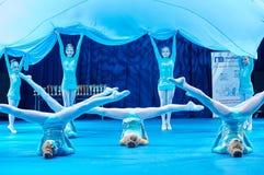 'MegaDance'在芭蕾舞蹈艺术, 2015年11月28日的儿童的竞争在米斯克,白俄罗斯 免版税库存照片