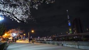 'Parque de Sumida 'en Asakusa, gente no identificada que disfruta de las flores de cerezo y de la luz-para arriba de la torre de  metrajes