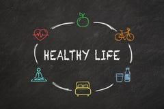 'Texto da vida saudável 'e ícones coloridos em um quadro-negro ilustração royalty free