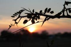 '/Sunset de Ð-Ð°ÐºÐ°Ñ Imagen de archivo libre de regalías