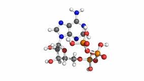"""""""- ATP del trifosfato Adenosine-5, modello girante royalty illustrazione gratis"""