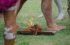"""""""Куря церемония """"среди индигенных австралийцев которая включает заводы горения для произведения дыма стоковые изображения rf"""