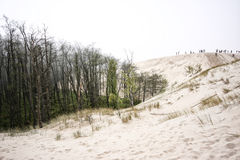 """""""för SÅ-'owiÅ skidar nationalparken i Polen Royaltyfria Foton"""