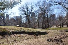 """JesieÅ Central Park Нью-Йорка Стоковая Фотография RF"