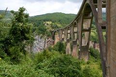 ‡ För eviÄ för ` för Ä-urÄ en Tara Bridge i nationalparken Durmitor i Montenegro Royaltyfri Bild