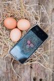 ‹Astuto del †del ‹del technology†del telefono del ‹dello smart†di uso dell'agricoltore del ‹di The†da vendere Fotografie Stock Libere da Diritti