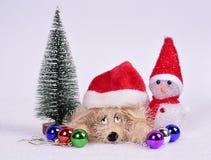 ‹D'†de ‹d'†de chien de jouet dans un chapeau de Noël avec un arbre de Noël de bonhomme de neige b Photographie stock libre de droits