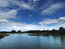 ‹d'over†de ciel bleu et de nuages le parc Photos libres de droits