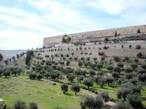 ‹Del †del ‹del †de la ciudad de Jerusalén Israel Panorama de la arquitectura religiosa de la vieja parte de la ciudad foto de archivo libre de regalías