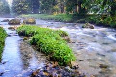 › D'IalomiÈ une rivière photographie stock libre de droits