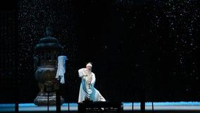€œFu Shan de Tai Chi Chuan-Shanxi Operaticâ au  de Beijing†banque de vidéos