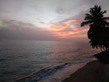 € «Стелла пляжа Playa Corcega, Пуэрто-Рико Стоковая Фотография RF