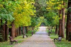 € ландшафта осени «benches на красивой дорожке осени в PA Стоковые Фото