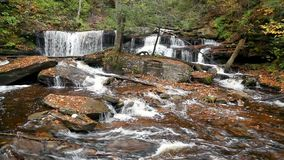 "€ ""Ricketts Glen Pennsylvania för Delaware nedgångögla stock video"