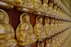 一万Buddhas寺庙  图库摄影