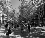 一下来夏天视图La兰布拉在巴塞罗那西班牙 免版税库存照片