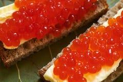 一个三明治用红鲑鱼鱼子酱 图库摄影