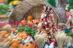 一个丰富多样的秋天收获在选择聚焦 免版税库存图片