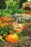 一个丰富多样的秋天收获 免版税库存照片