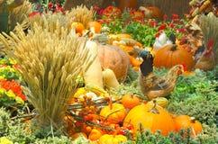 一个丰富多样的秋天收获 免版税库存图片