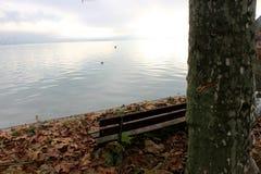 一个五颜六色的秋天山湖树风景在Annecy湖法国 免版税库存照片
