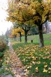 一个五颜六色的秋天山湖树风景在Annecy湖法国 免版税库存图片