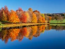 一个五颜六色的秋天风景的反射 免版税库存图片