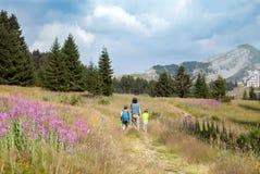 一个人和两个男孩在山的道路走 图库摄影