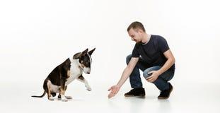 一个人和他的牧羊犬的情感友谊的画象,人和动物概念和关心  库存照片