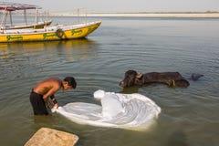 一个人在圣洁甘加河洗涤板料 库存图片