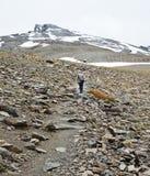 上升到高峰Veleta的远足者在内华达山脉 免版税库存图片