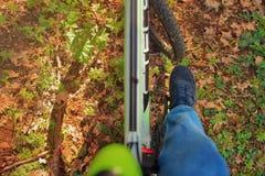 一个人在森林公路关闭在春天骑一辆自行车  库存照片