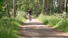 一个人在森林道路骑自行车 他带领一种健康生活方式 股票视频