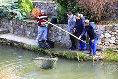 一个人在池塘捉住sterlet 库存图片