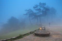 一个人在薄雾走了 免版税库存照片