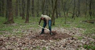 一个人开掘一条死的狗的一个坟墓 投掷铁锹坑地球 狗的坟墓 Prores,慢动作 股票视频