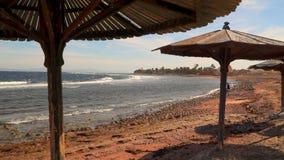 一个人沿一个离开的海滩单独走 股票视频