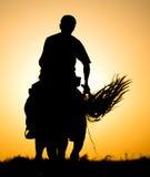 一个人的剪影一匹马的在日落 免版税图库摄影