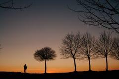 一个人的剪影和在日落的一棵树 免版税库存图片
